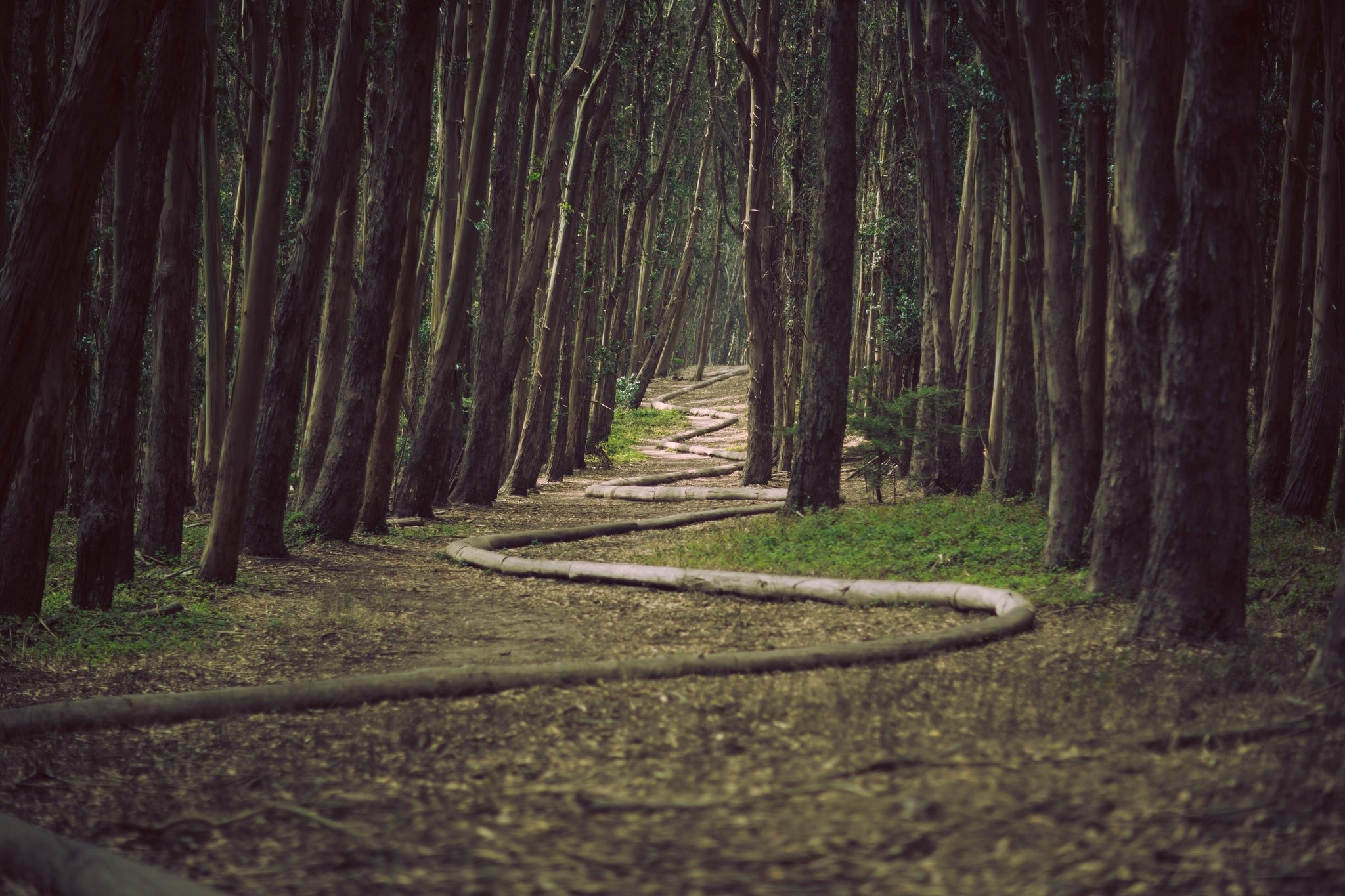 Intuition is like a winding path